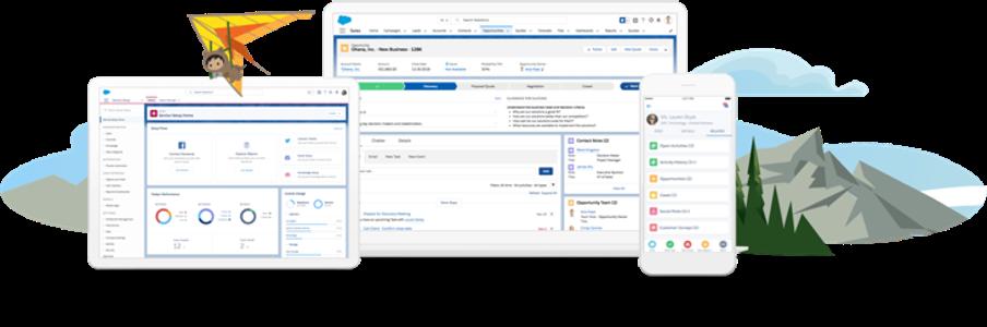 Data Driven Salesforce